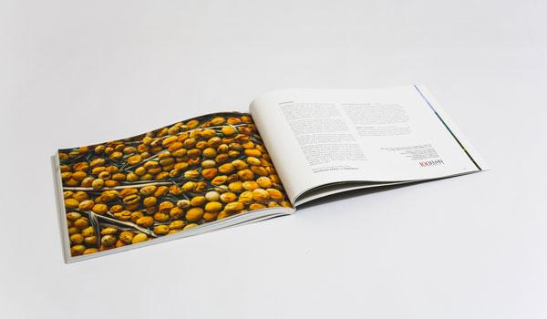 armenian-facts_book_design_printzoneplus_book-printin_harut_genjoyan_armenia-book-award_8